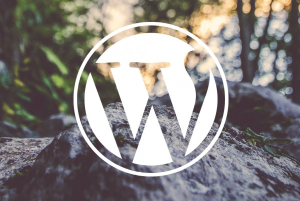 wordpress-2015